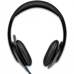 Logitech USB Headset H540 [Item Discontinued]