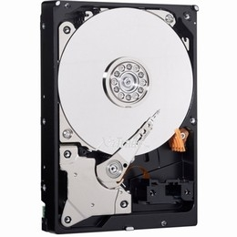 Western Digital Blue 750GB SATA 6Gb s 8MB Cache 5400RPM 2.5 Mobile Hard Drive